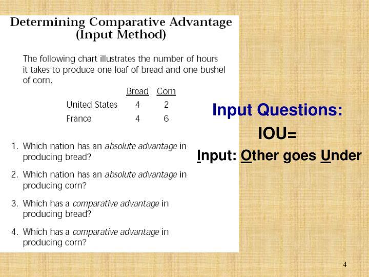Input Questions: