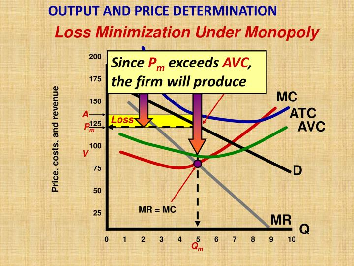 OUTPUT AND PRICE DETERMINATION