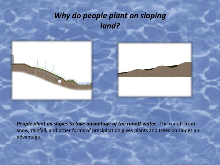 Why do people plant on sloping land?