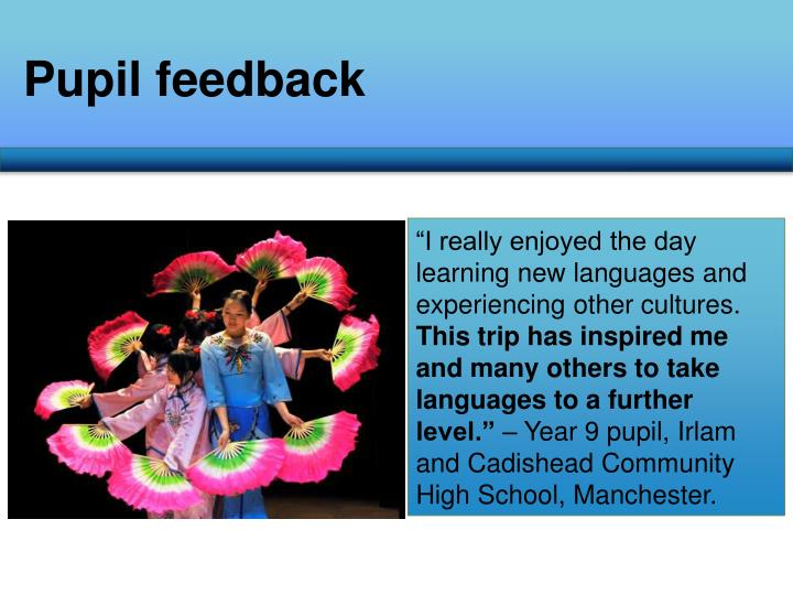 Pupil feedback