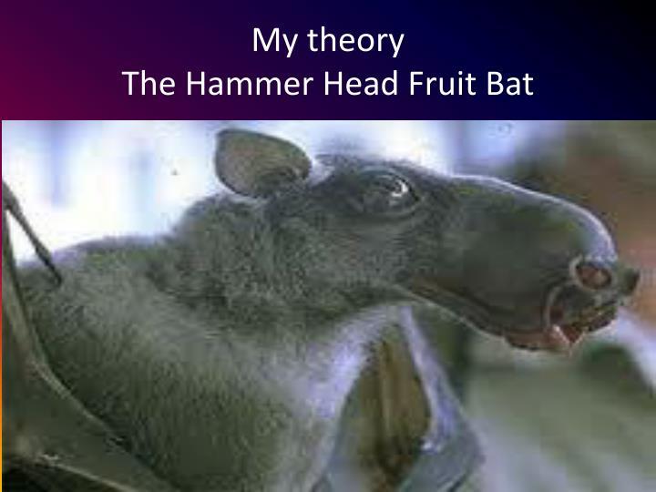 Hammer headed bat