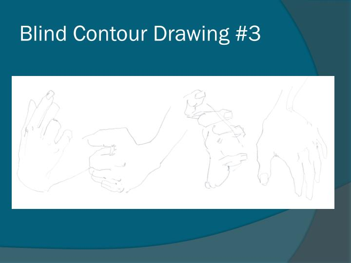 Blind Contour Drawing #3