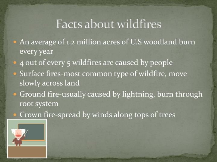 Facts about wildfires