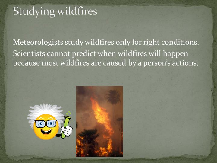 Studying wildfires