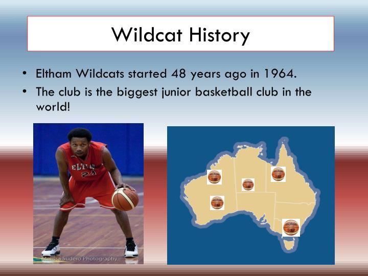 Wildcat History
