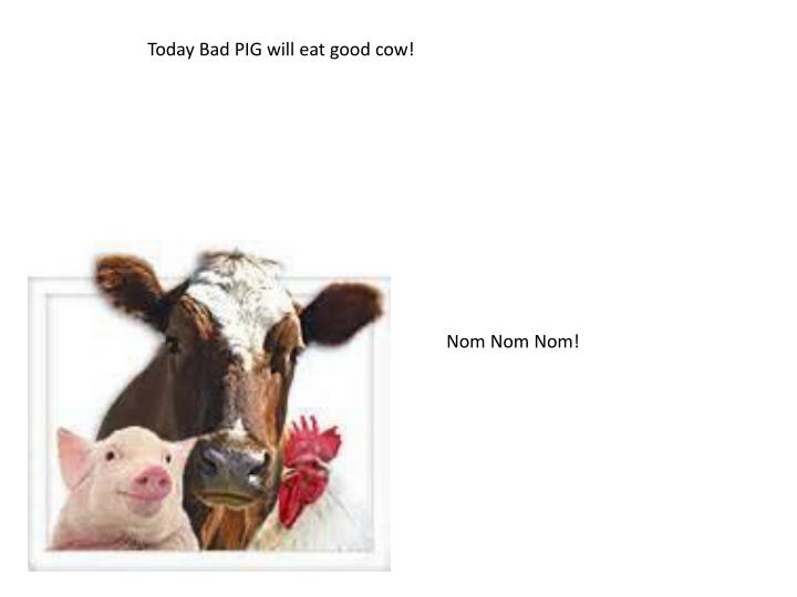 Today Bad PIG will eat good cow!