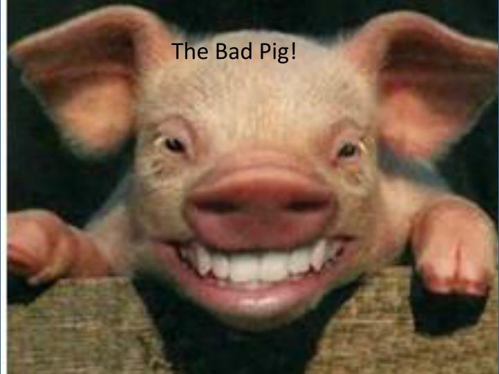 The Bad Pig!