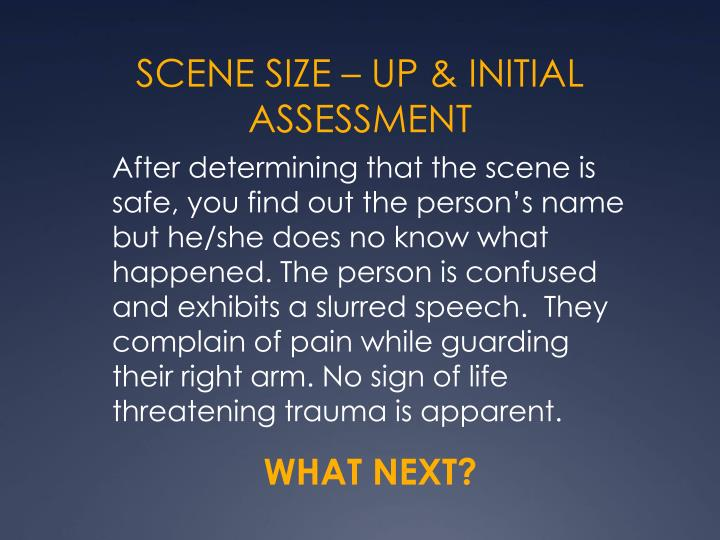 SCENE SIZE – UP & INITIAL ASSESSMENT