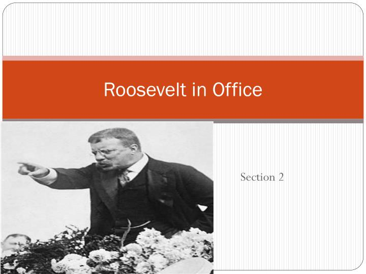 Roosevelt in Office