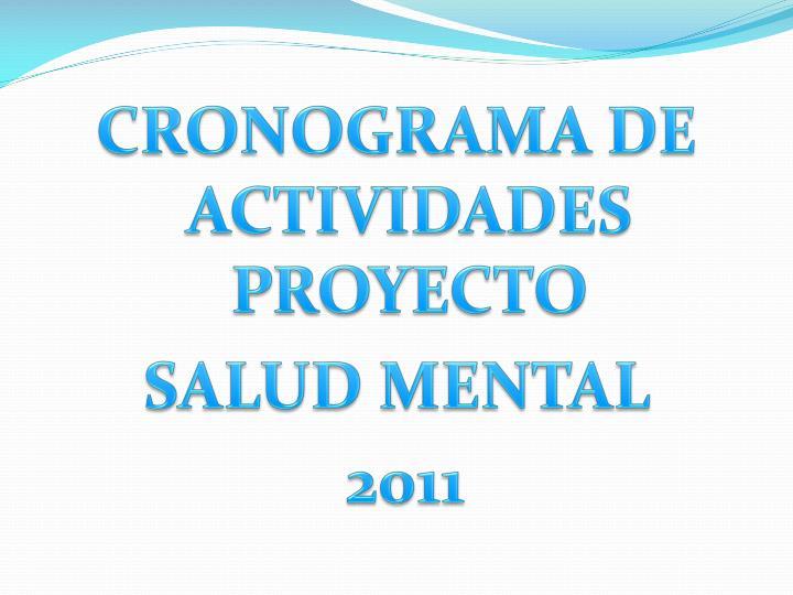 CRONOGRAMA DE ACTIVIDADES PROYECTO