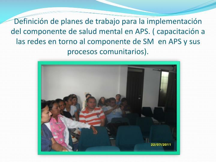 Definición de planes de trabajo para la implementación del componente de salud mental en APS. ( capacitación a las redes en torno al componente de SM  en APS y sus procesos comunitarios).