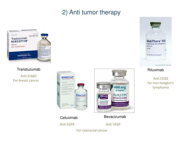 2) Anti tumor therapy