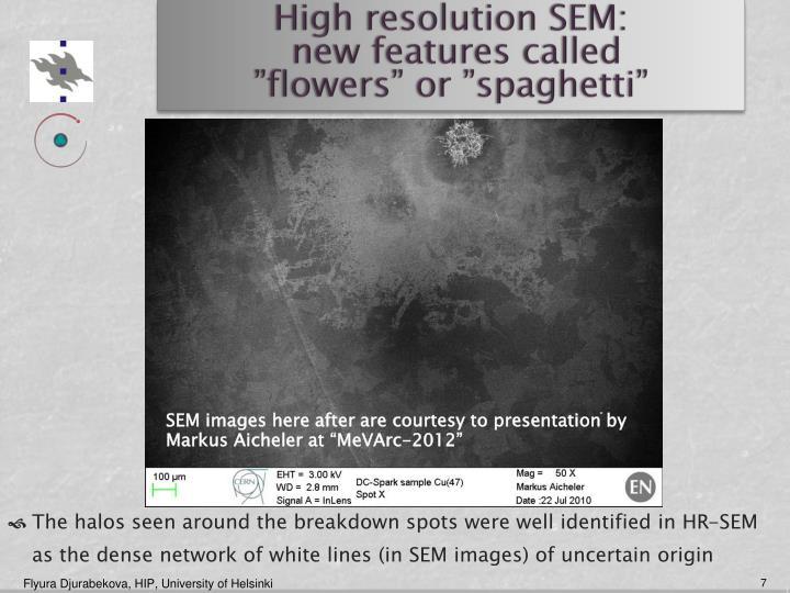 High resolution SEM: