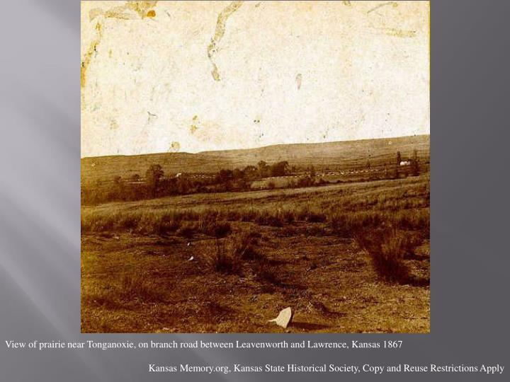 View of prairie near Tonganoxie, on branch road between Leavenworth and Lawrence, Kansas 1867
