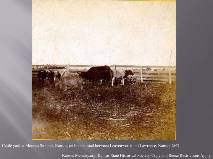 Cattle yard at Moore's Summit, Kansas, on branch road between Leavenworth and Lawrence, Kansas 1867.