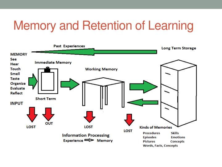Memory and Retention of Learning
