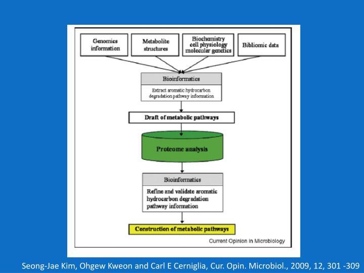 Seong-Jae Kim, Ohgew Kweon and Carl E Cerniglia, Cur. Opin. Microbiol., 2009, 12, 301 -309