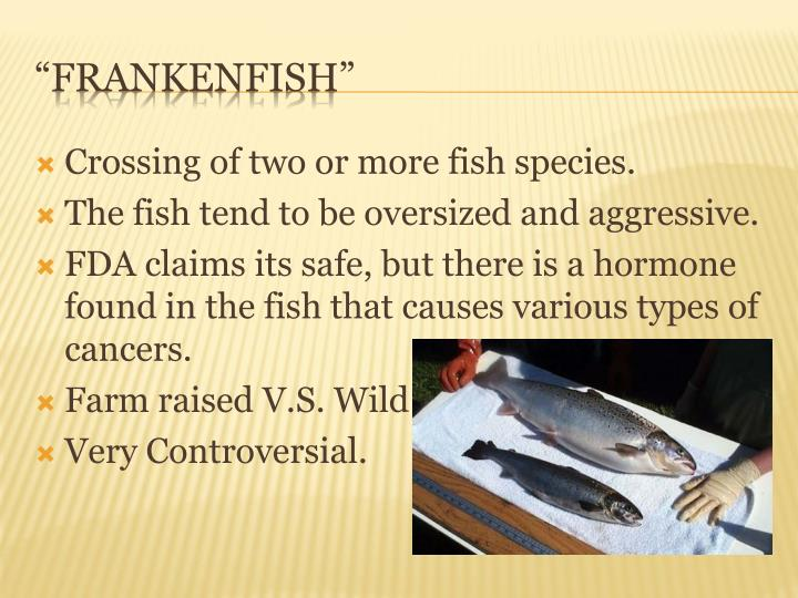 Crossing of two or more fish species.