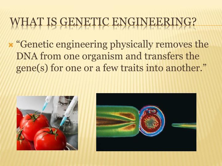 """""""Genetic"""