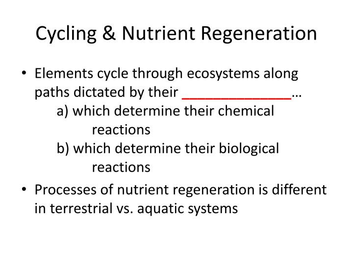 Cycling & Nutrient Regeneration