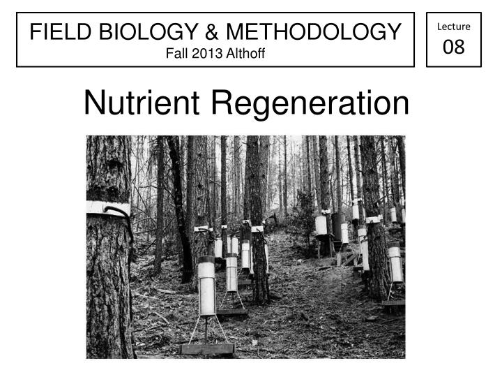 Nutrient regeneration