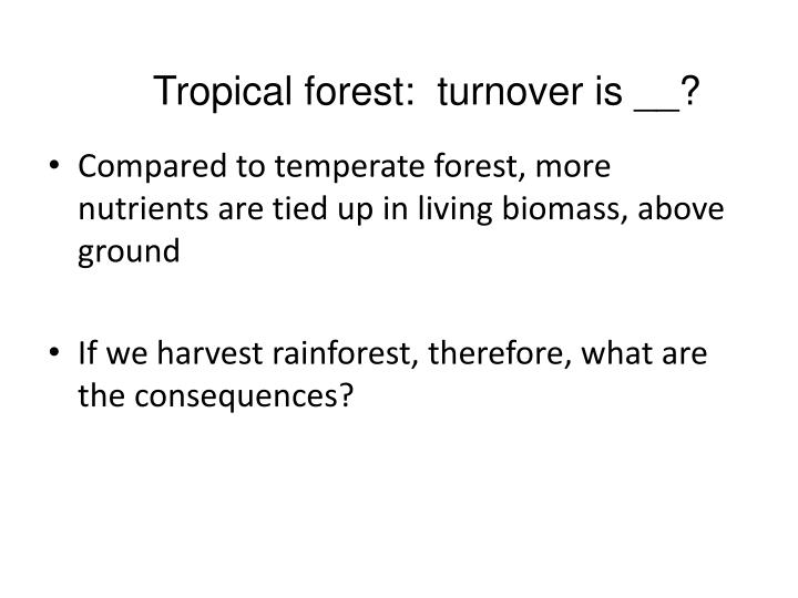 Tropical forest:  turnover is __?