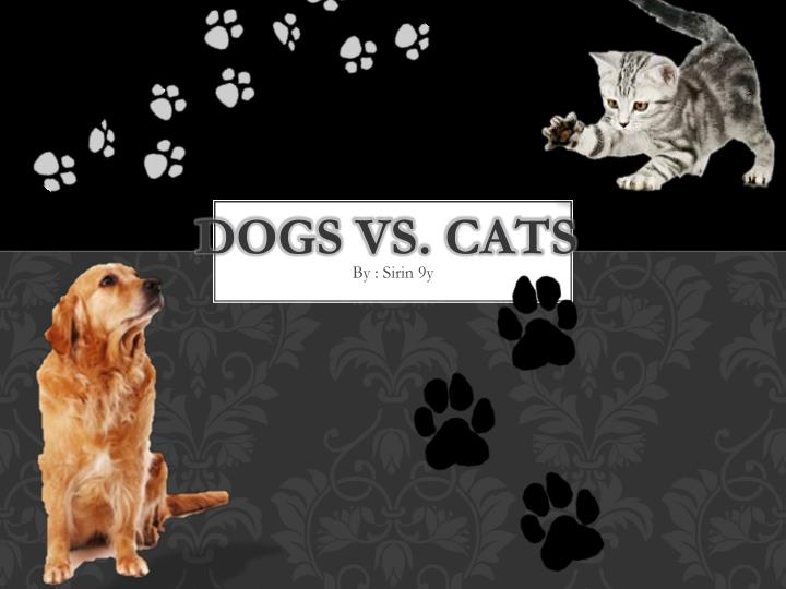 a comparison of cats and dogs Cat are more often solitaryhunters a dogs instincts to hunt are either bred out of them orbred to enhance cats despite breed are excellent hunters no extra training needed dog and cats are both valued companions, who will bond with the adoptive families.