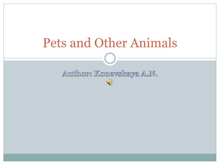 Pets and other animals