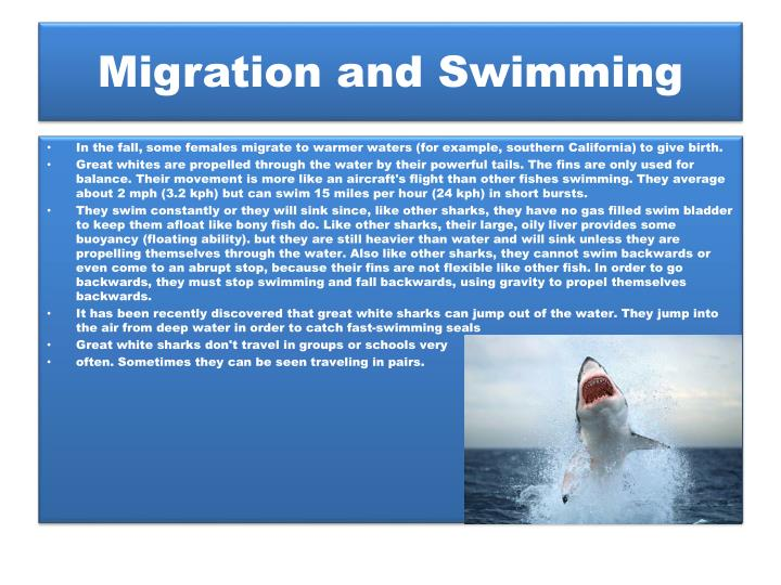 Migration and Swimming