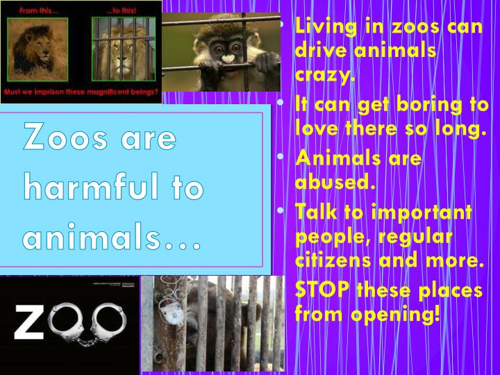 Zoos are harmful to animals…