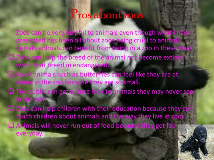 "should animals be kept in the zoo essay This is a one thousand word essay for kids on the subject ""animals should not be  kept in zoos"" there are many ways to write this essay so the."