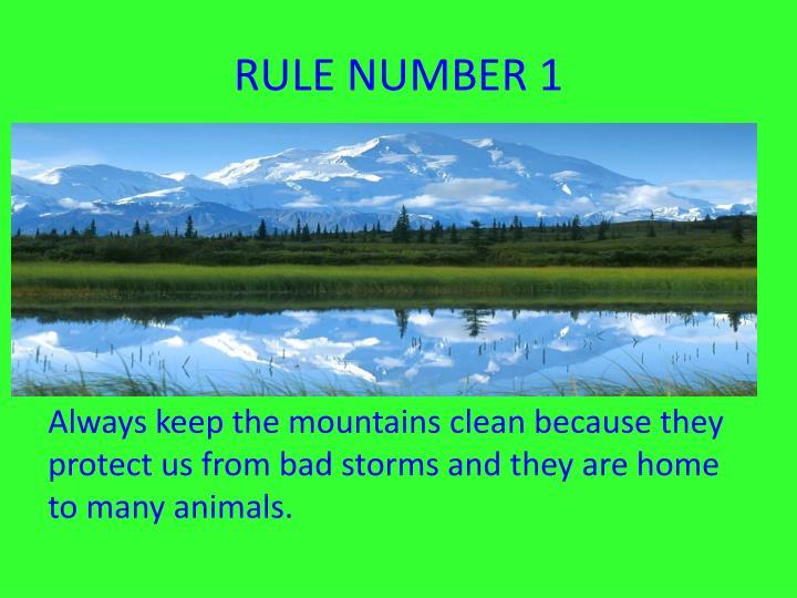 RULE NUMBER