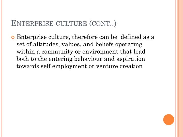 Enterprise culture (cont..)