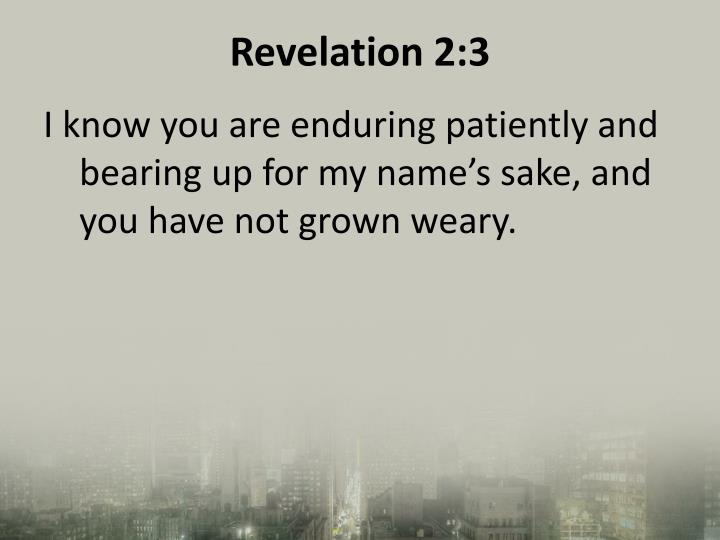 Revelation 2:3