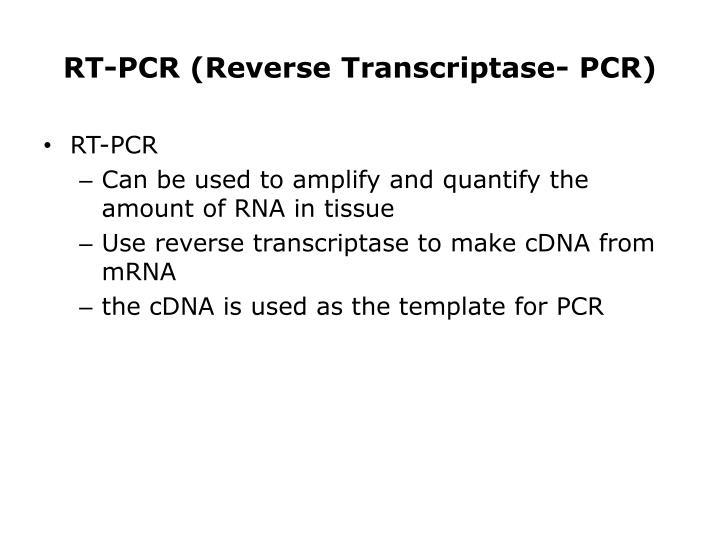 RT-PCR (Reverse Transcriptase- PCR)