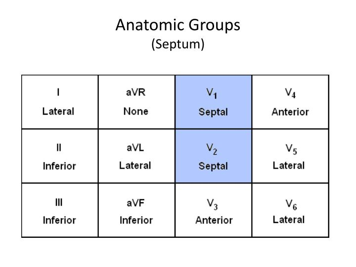 Anatomic Groups