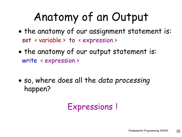 Anatomy of an Output