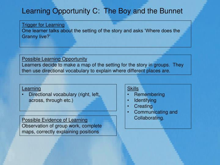 Learning Opportunity C:  The Boy and the Bunnet
