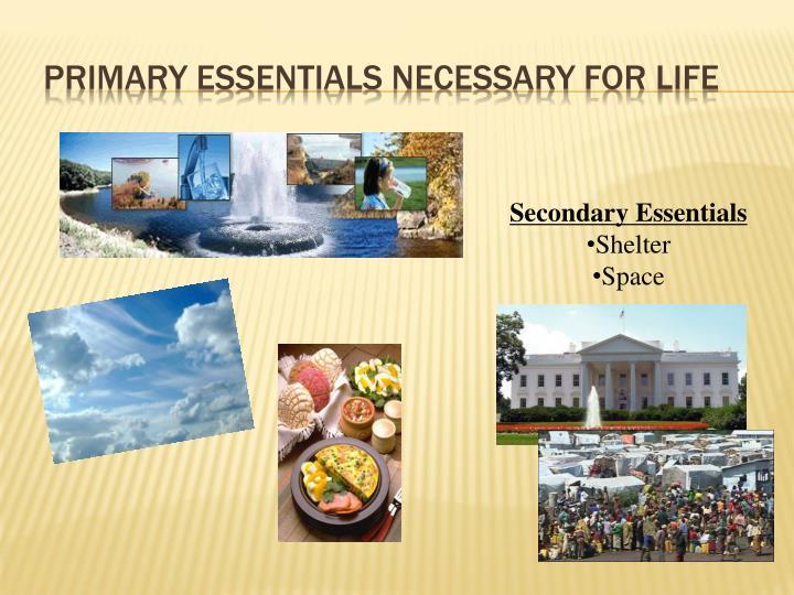 Primary essentials necessary for life