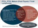 ptcl ptcl mature post thymic t cell lymphomas