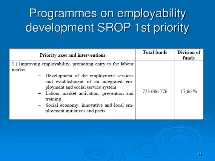 Programmes on employability development