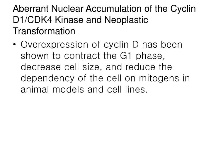 Aberrant Nuclear Accumulation of the Cyclin D1/CDK4 Kinase and Neoplastic Transformation