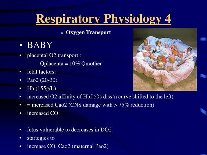Respiratory Physiology 4