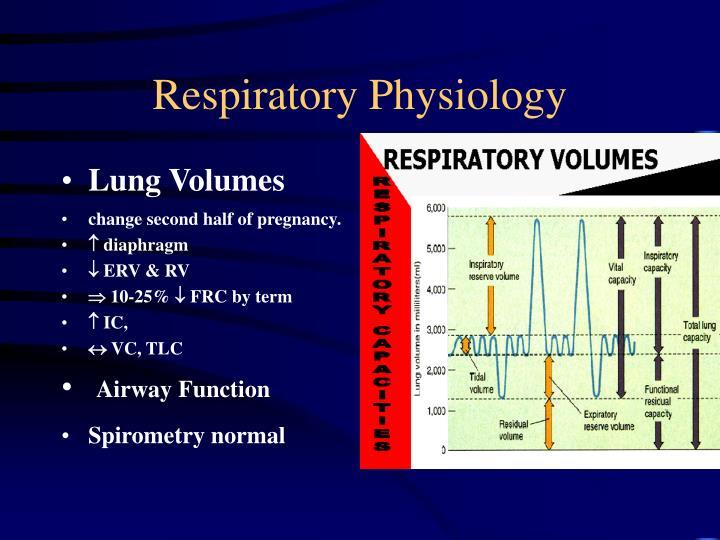 Respiratory Physiology