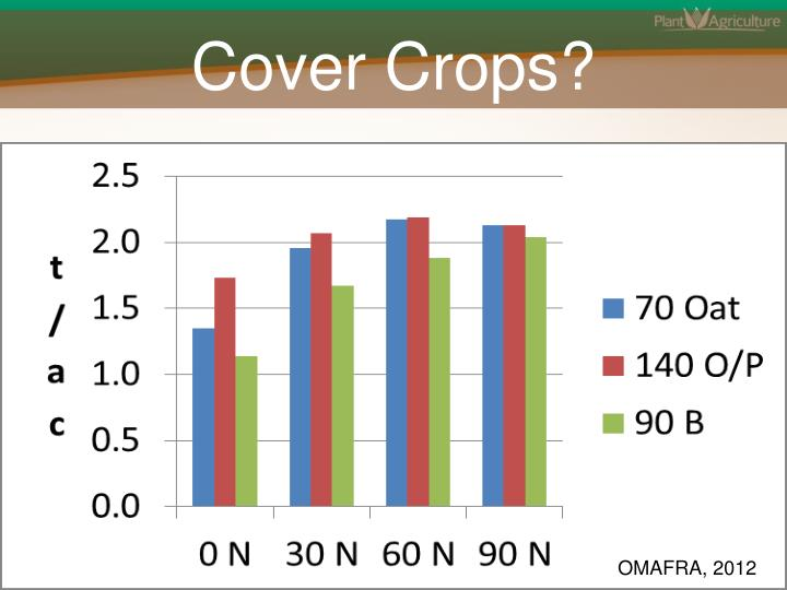 Cover Crops?