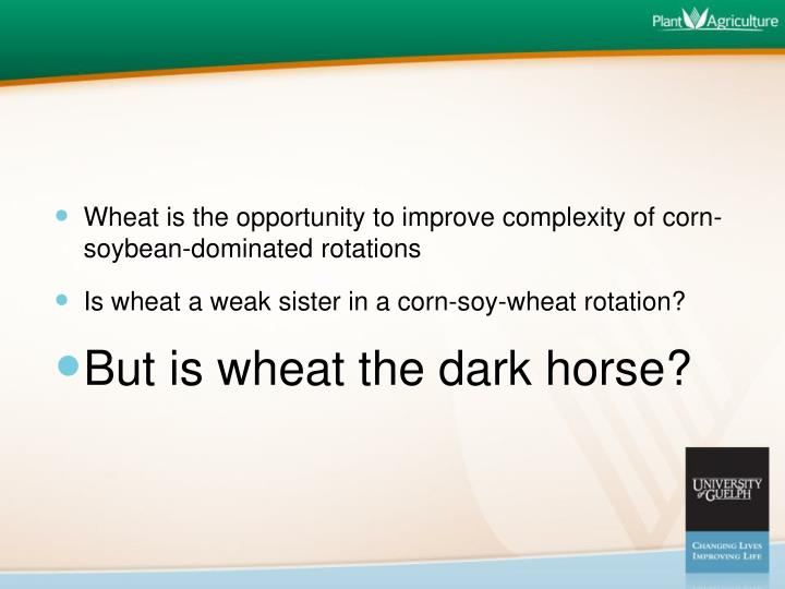 Wheat is the opportunity to improve complexity of corn-soybean-dominated rotations