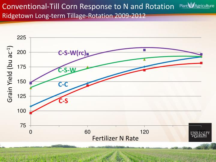 Conventional-Till Corn Response to N and Rotation