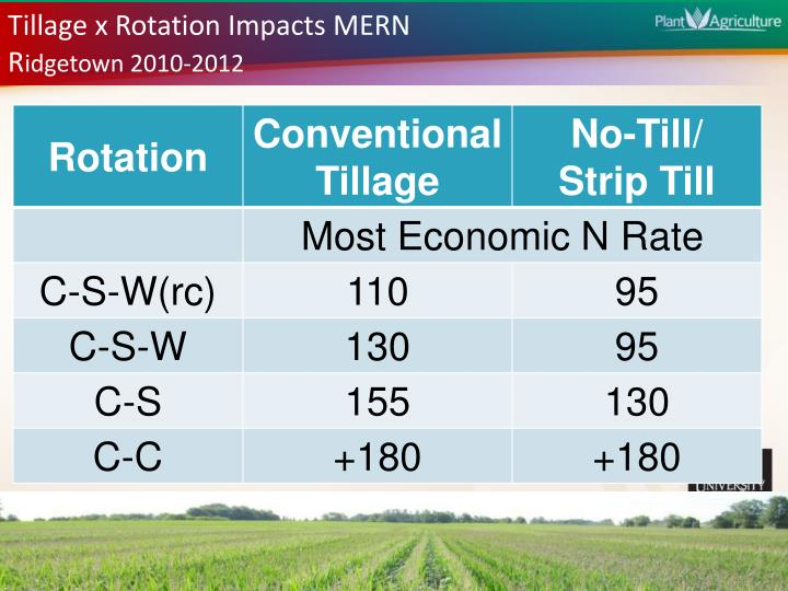 Tillage x Rotation Impacts