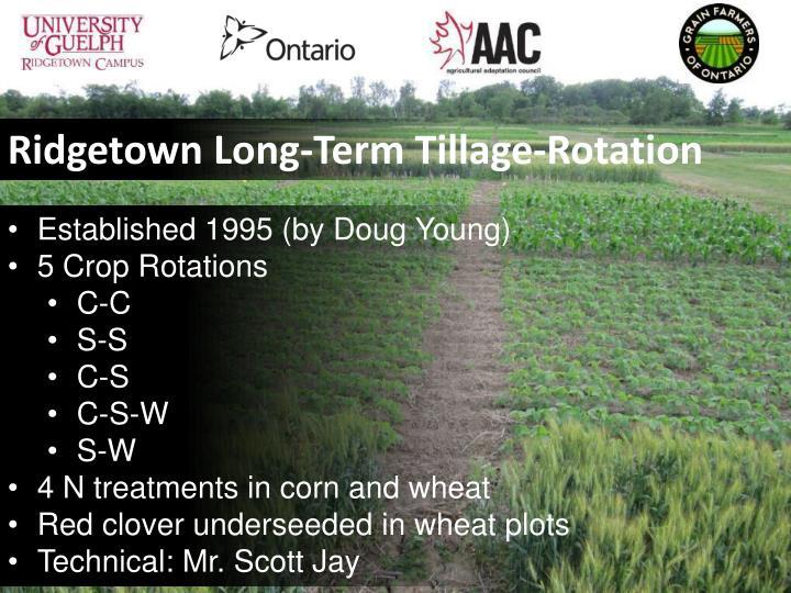 Ridgetown Long-Term Tillage-Rotation