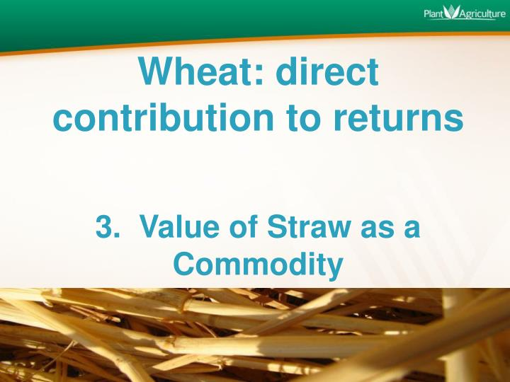Wheat: direct contribution to returns